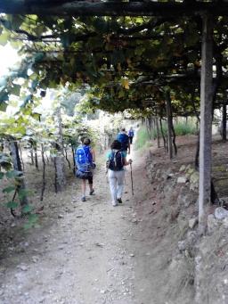 4 ª etapa – Pontevedra a Caldas de Reis – 21, 9 Km