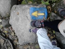 5 ª etapa – Caldas de Reis – Faramello 33 Km